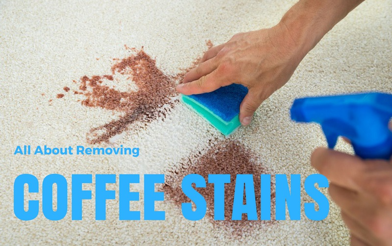 How To Remove Coffee Stains >> All About Removing Coffee Stains How To Get It Out Of Carpet Clothes