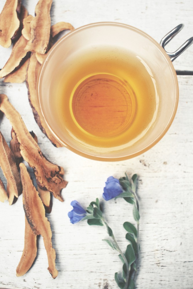 What is Mushroom Tea?