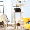The Best Cat Trees for Large Cats