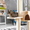 The Best Cat Trees for Small Apartments