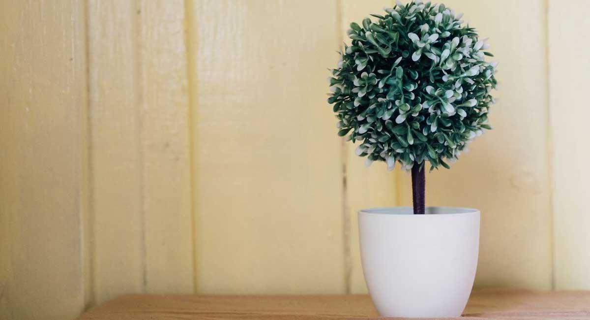 How to Make Fake Plants